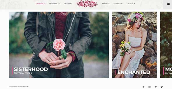 feminine-wordpress-themes